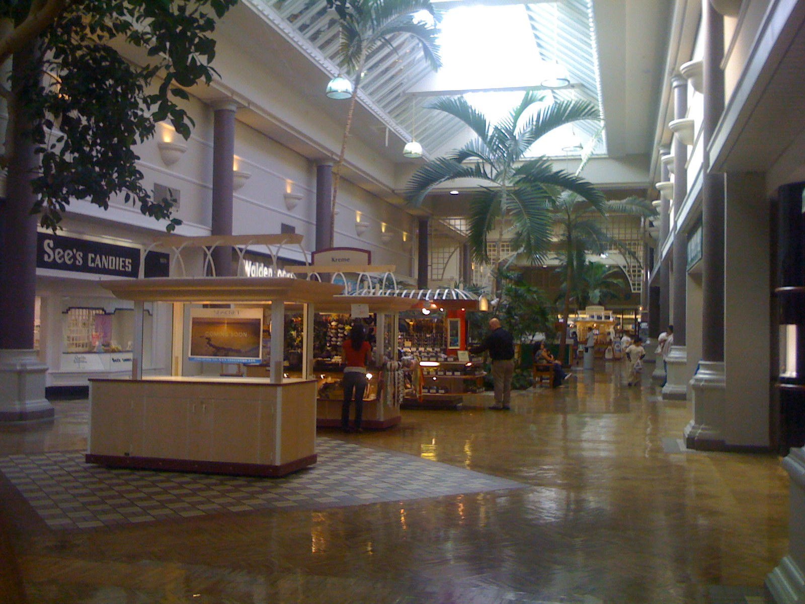 Northgate Mall San Rafael, CA () When I first came back from Singapore in and saw this mall I was taken aback. Whatever happened to all the shops. It used to be FUN shopping. The toy store next to Mervyns and directly across was a card/anime store where I purchased my very first Pokémon pack. There was a book /5().