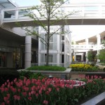 oakbrook-center-20