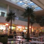 west-edmonton-mall-10