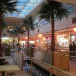 west-edmonton-mall-12