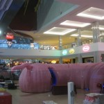 west-edmonton-mall-30
