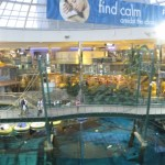 west-edmonton-mall-44