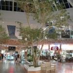 sunland-park-mall-20