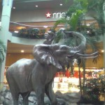Burlington-Square-Mall-28