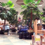 hickory-ridge-mall-02