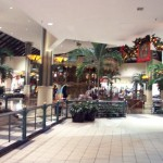 hickory-ridge-mall-08