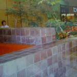 Beverlys 1980s