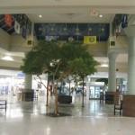 martinsburg-mall-31