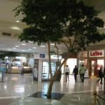 martinsburg-mall-33