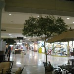 martinsburg-mall-37