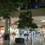 martinsburg-mall-39