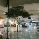 martinsburg-mall-40