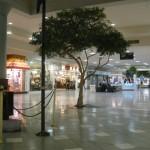 martinsburg-mall-41