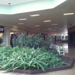 Schuylkill-Mall-12.jpg